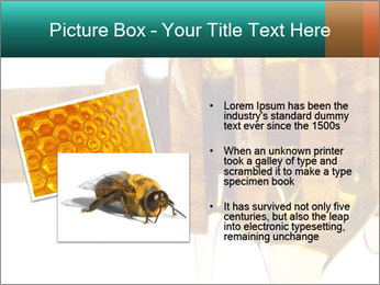 0000078497 PowerPoint Templates - Slide 20