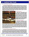 0000078502 Word Templates - Page 8