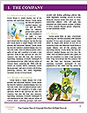 0000078504 Word Template - Page 3