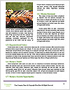 0000078507 Word Templates - Page 4