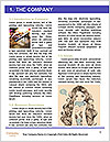 0000078516 Word Template - Page 3