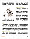 0000078520 Word Templates - Page 4