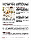 0000078523 Word Templates - Page 4