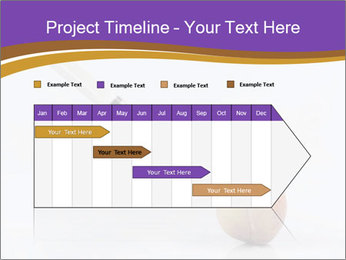 0000078524 PowerPoint Template - Slide 25
