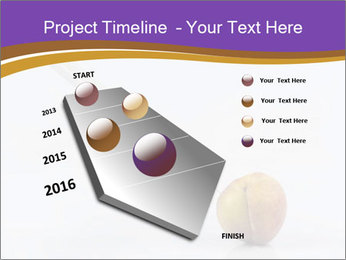 0000078524 PowerPoint Template - Slide 26