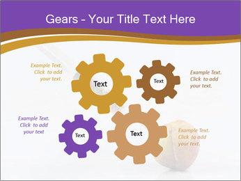 0000078524 PowerPoint Template - Slide 47