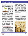 0000078530 Word Template - Page 3