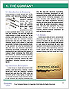 0000078533 Word Template - Page 3
