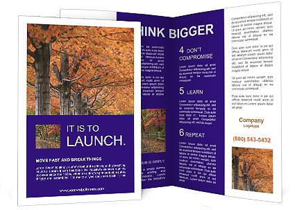 0000078534 Brochure Templates