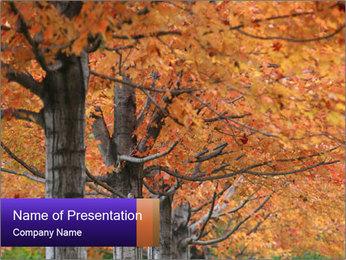 0000078534 PowerPoint Template - Slide 1