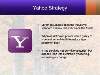 0000078534 PowerPoint Template - Slide 11
