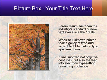 0000078534 PowerPoint Template - Slide 13
