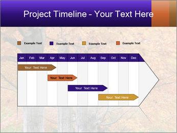 0000078534 PowerPoint Template - Slide 25
