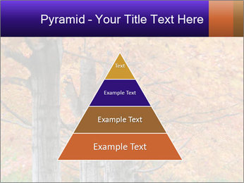 0000078534 PowerPoint Template - Slide 30
