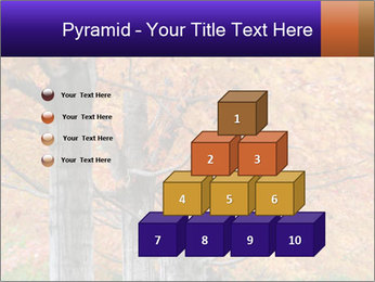 0000078534 PowerPoint Template - Slide 31