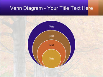 0000078534 PowerPoint Template - Slide 34