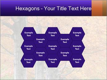 0000078534 PowerPoint Template - Slide 44