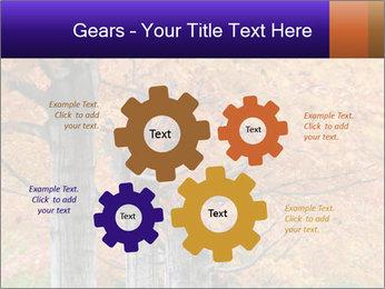 0000078534 PowerPoint Template - Slide 47