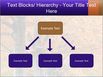 0000078534 PowerPoint Template - Slide 69