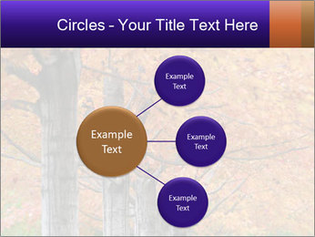 0000078534 PowerPoint Template - Slide 79