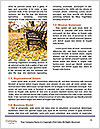 0000078534 Word Template - Page 4