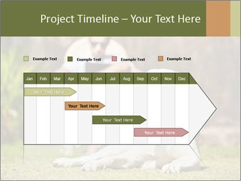 0000078536 PowerPoint Template - Slide 25