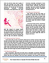 0000078538 Word Template - Page 4