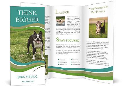 0000078544 Brochure Template