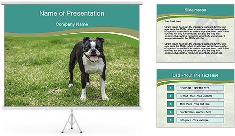 0000078544 PowerPoint Template