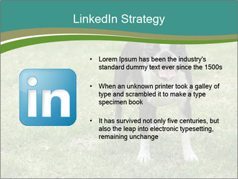 0000078544 PowerPoint Templates - Slide 12