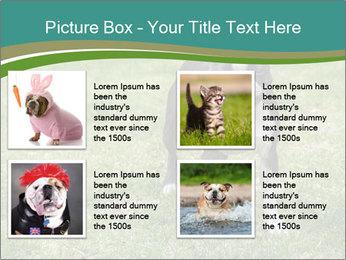 0000078544 PowerPoint Templates - Slide 14