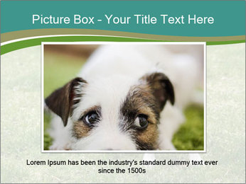 0000078544 PowerPoint Template - Slide 15