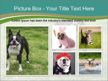 0000078544 PowerPoint Templates - Slide 19