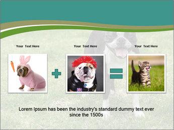0000078544 PowerPoint Template - Slide 22