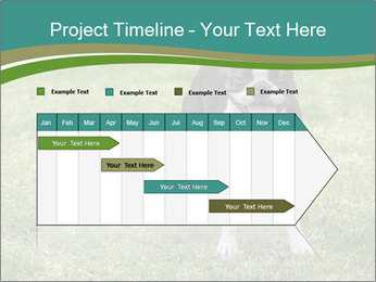 0000078544 PowerPoint Templates - Slide 25