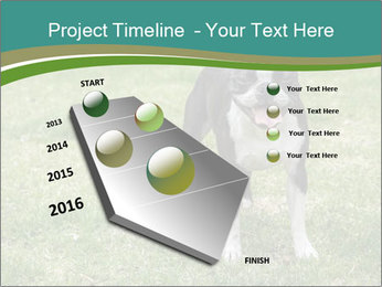 0000078544 PowerPoint Templates - Slide 26