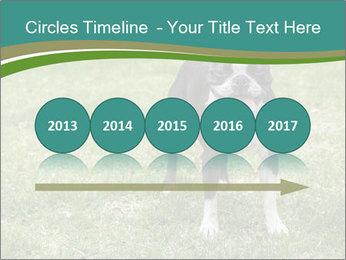 0000078544 PowerPoint Templates - Slide 29