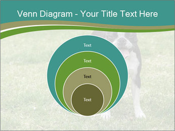 0000078544 PowerPoint Templates - Slide 34