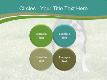 0000078544 PowerPoint Templates - Slide 38