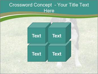 0000078544 PowerPoint Template - Slide 39