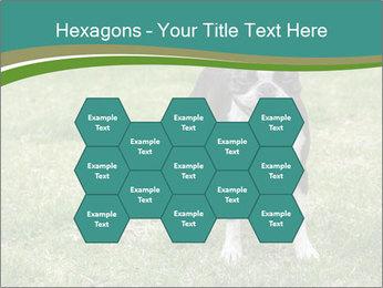 0000078544 PowerPoint Templates - Slide 44
