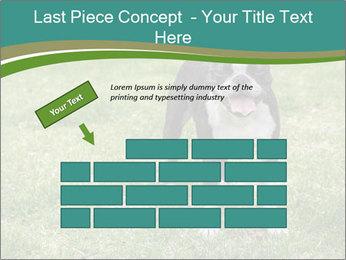 0000078544 PowerPoint Templates - Slide 46