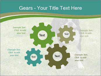 0000078544 PowerPoint Template - Slide 47