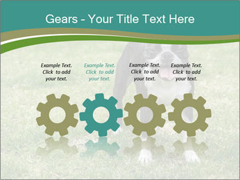 0000078544 PowerPoint Template - Slide 48