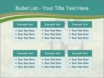 0000078544 PowerPoint Templates - Slide 56