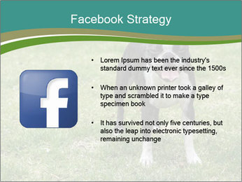 0000078544 PowerPoint Templates - Slide 6