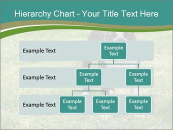 0000078544 PowerPoint Templates - Slide 67