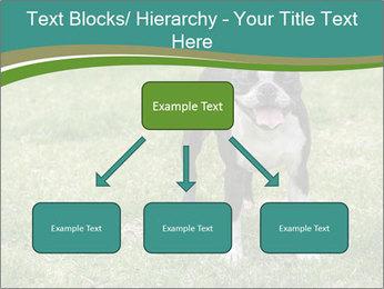 0000078544 PowerPoint Templates - Slide 69
