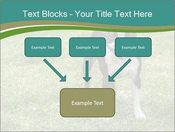0000078544 PowerPoint Templates - Slide 70
