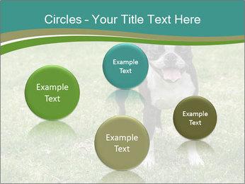 0000078544 PowerPoint Templates - Slide 77